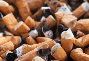 cigarette buds